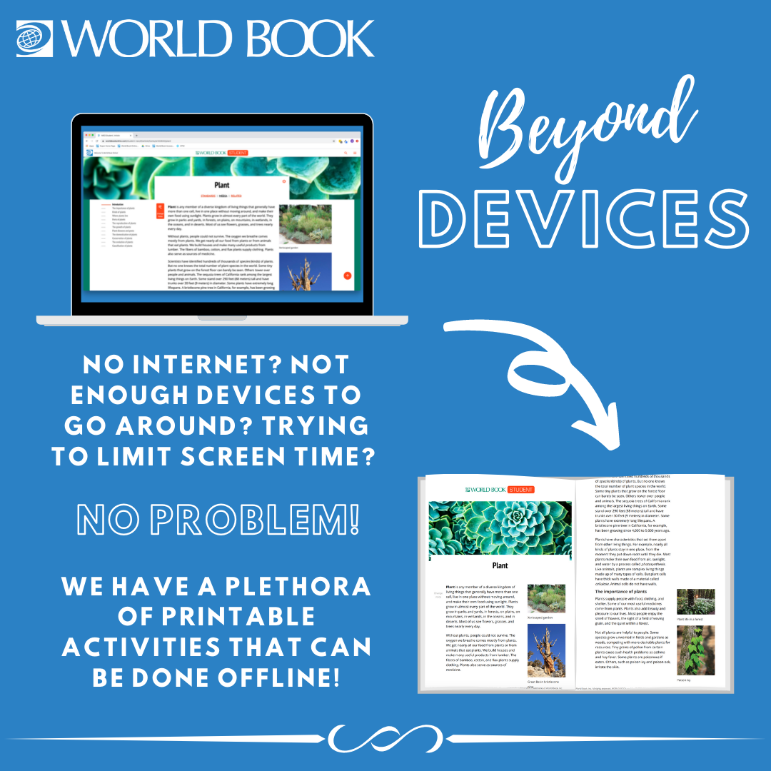 beyond devices