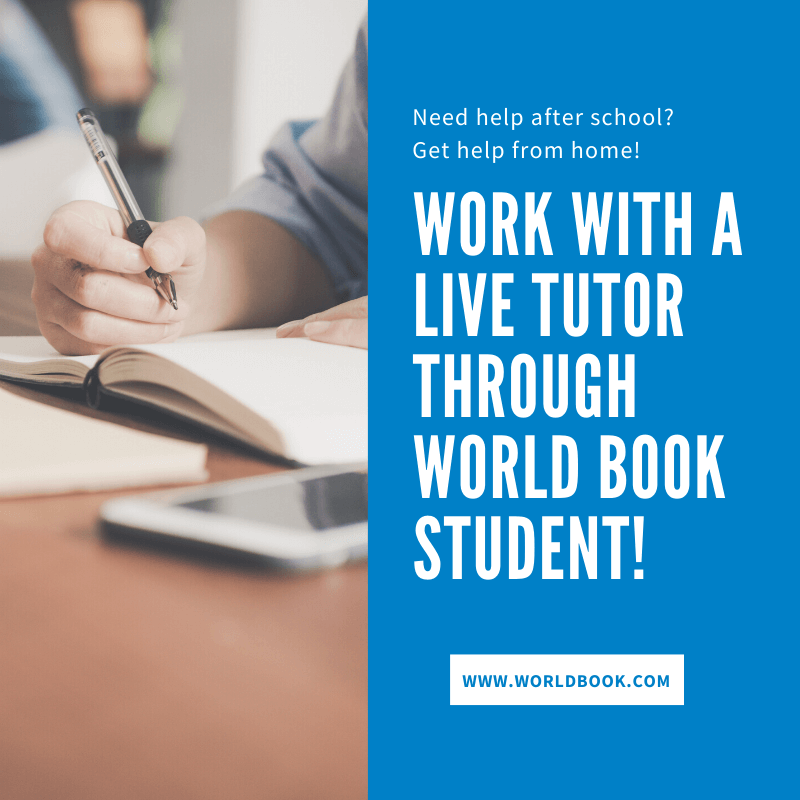 Live Homework Help After School